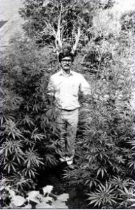 Kerala landrace strain, date unknown